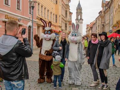 Osterhasen zu Ostern 2018 in Bautzen