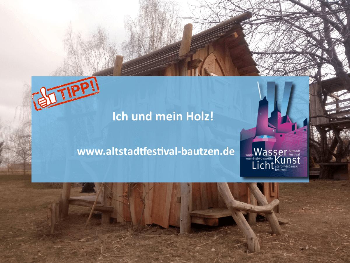 Akteure zum Altstadtfestival 2018 - Ingo Heinze