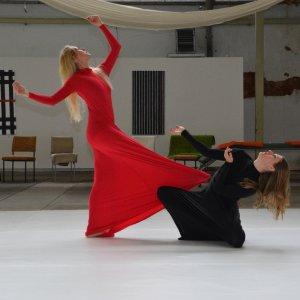 TanzArt zum Altstadtfestival 2018